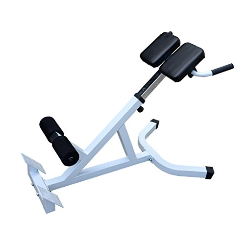 Performanz lower back bench abdominal strength exercise fitness core