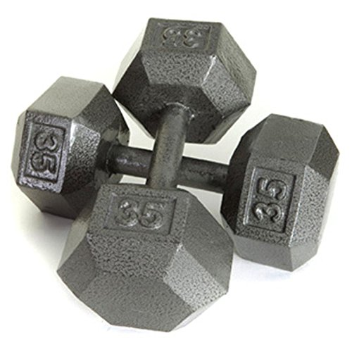 8e3f955edcd USA Sports by Troy Barbell 100 lb. Cast Iron Dumbbell - Single ...